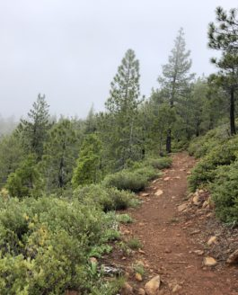 Red Buttes Hike