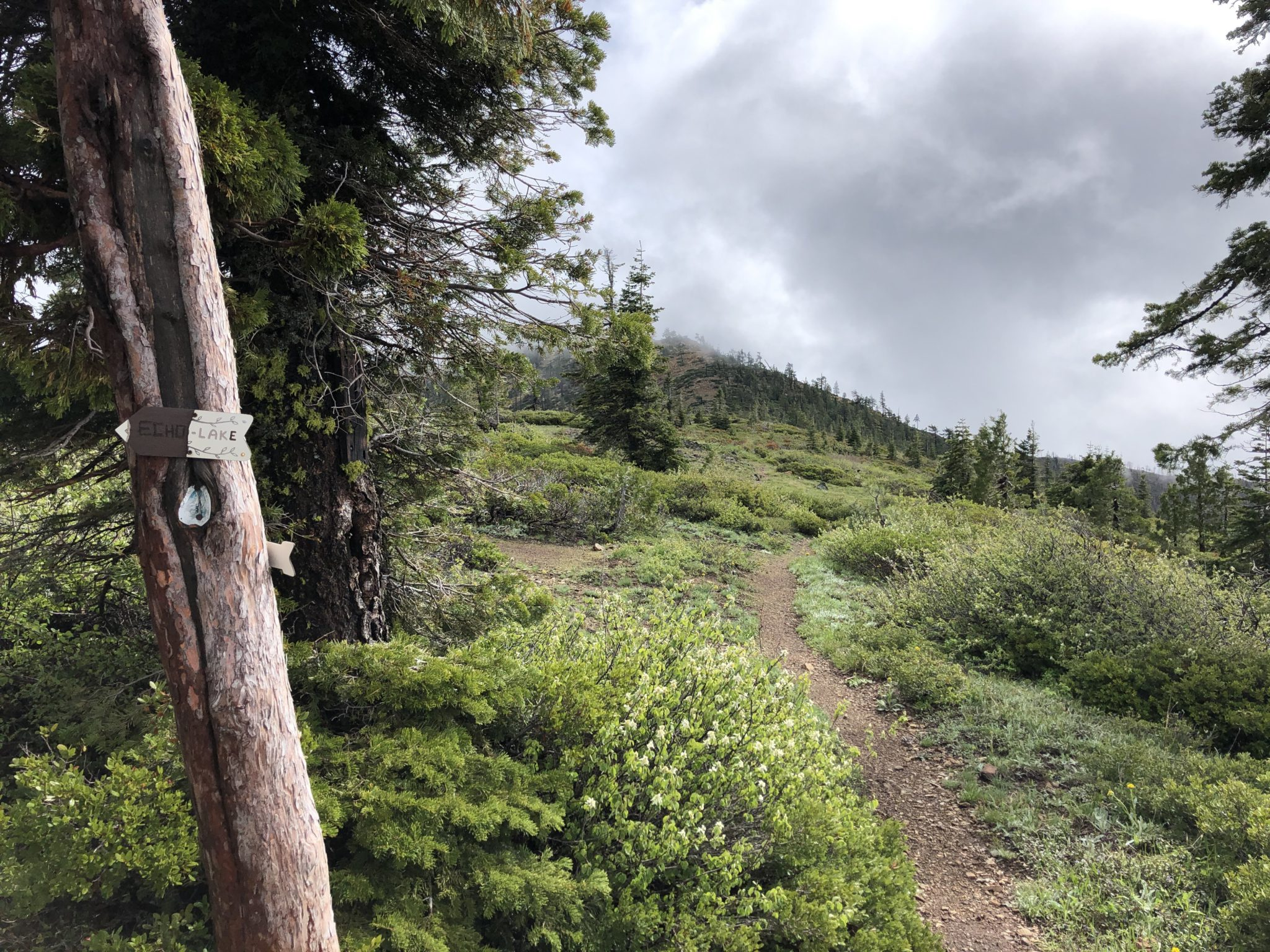 PCT Red Buttes Wilderness