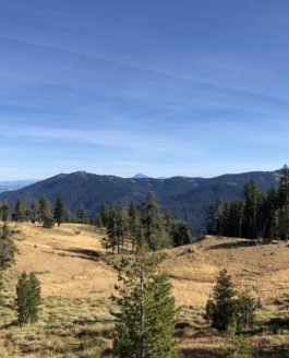 Siskiyou Gap Abandoned mine hike